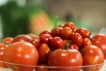 Fresh tomatoes from Farmers Markets, Photo, Illumina Media