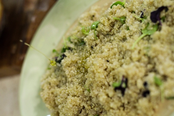 Quinoa generic photo illumia media.jpg